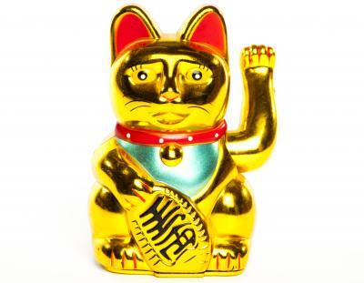 Mèo vàng may mắn