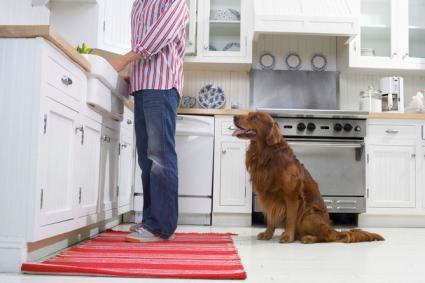Thảm đỏ trong bếp