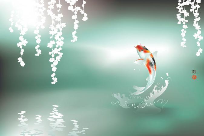 Phong thủy nhảy cá koi nghệ thuật