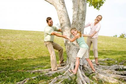 Tư thế gia đình sáng tạo xung quanh cây