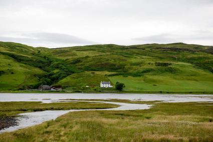 Ngôi nhà trong cảnh quan xanh