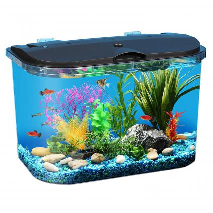 Koller Products Panaview 5-Gallon Aquarium Kit