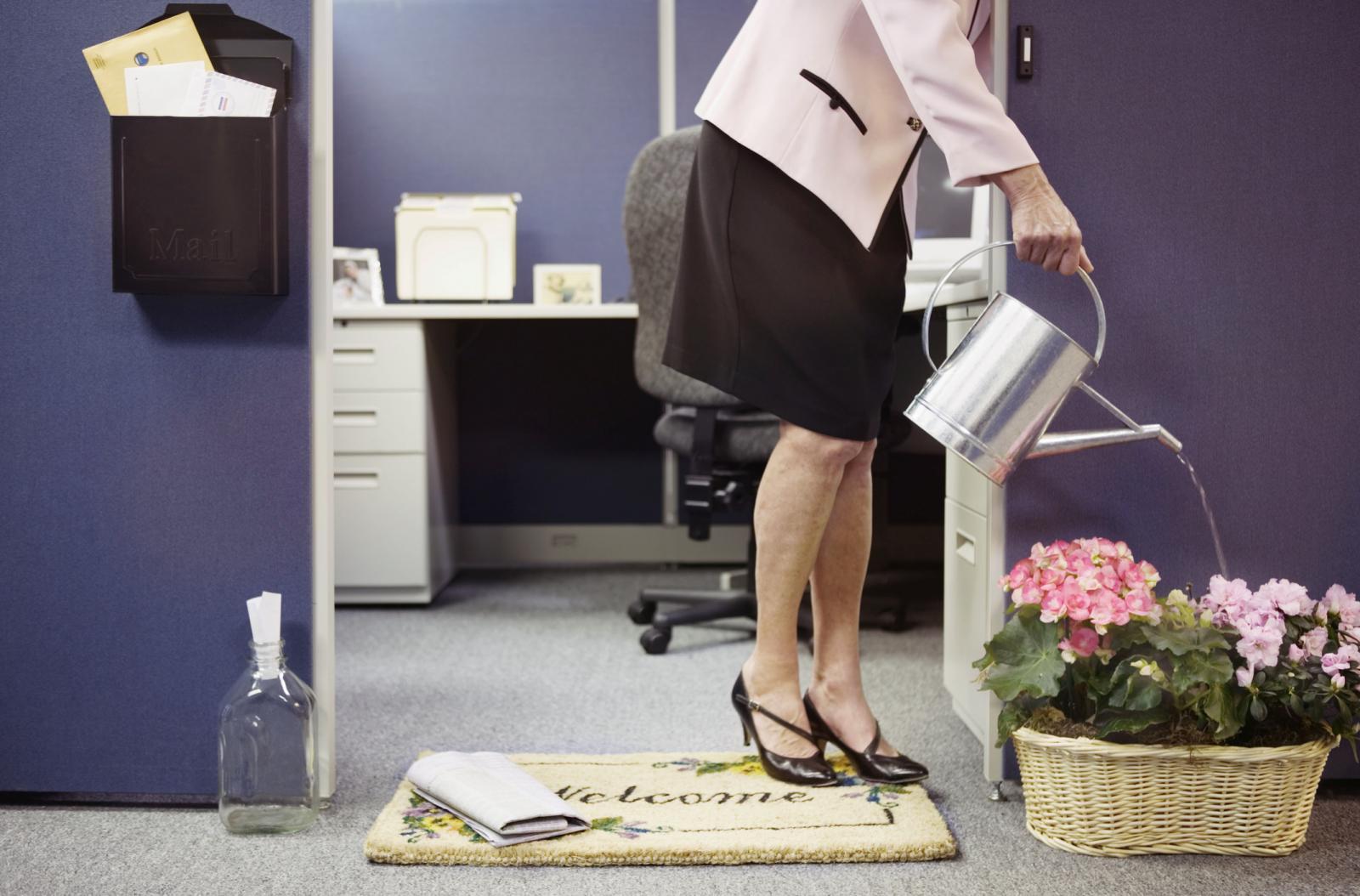 Nữ doanh nhân nội thất