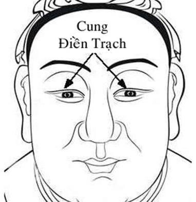 Cung Điền Trạch