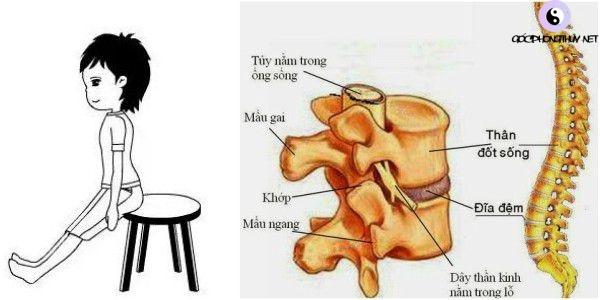 Kéo duỗi xương sống giúp phần lưng giảm bớt mệt mỏi