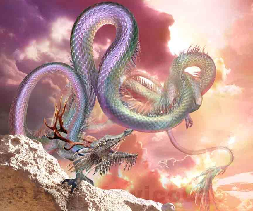 Rồng có mào, cựa gà, thân rắn, đùi thằn lằn, móng vuốt của chim ưng, đuôi rắn, sừng hươu, vẩy cá.
