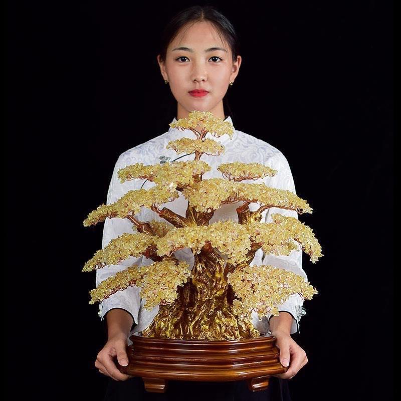 Cay Bonsai Da Thach Anh (6)