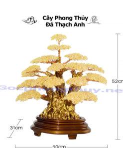 Cay Phong Thuy Bang Da Thach Anh Vang Cao Cap Qua Tang Sep (1)