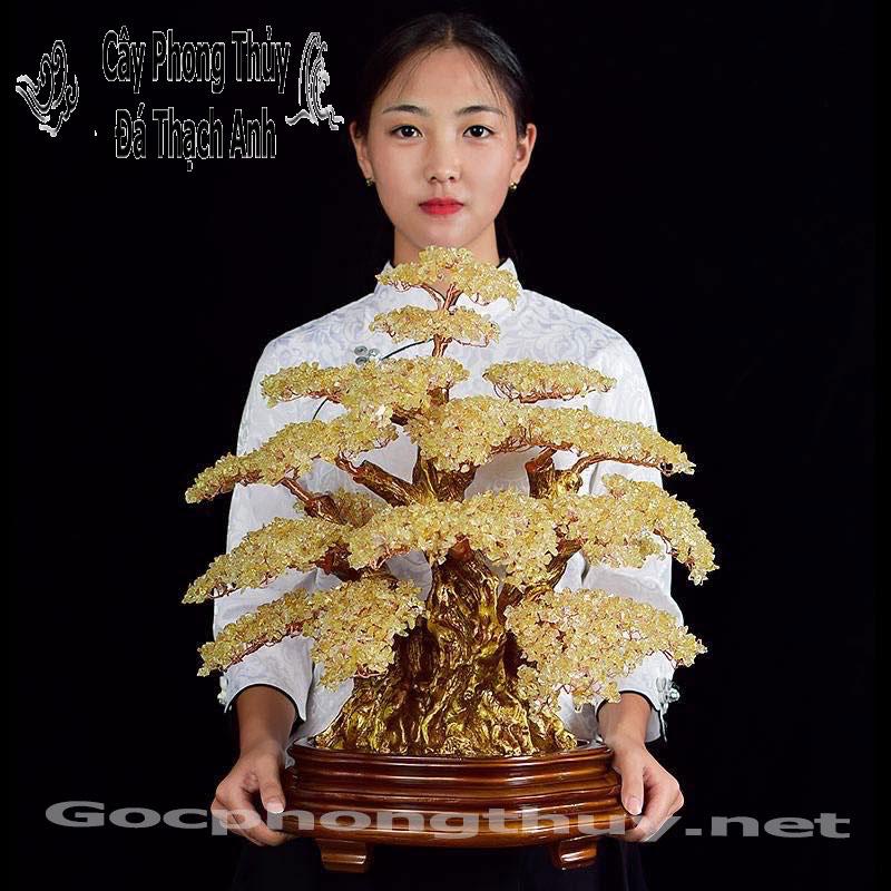 Cay Phong Thuy Bang Da Thach Anh Vang Cao Cap Qua Tang Sep (2)