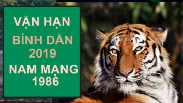 NAM BÍNH DẦN 1986 NĂM 2019 TỬ VI CHI TIẾT