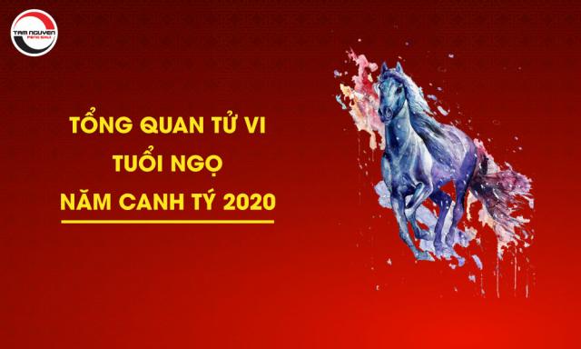 Tổng Quan Tử Vi Tuổi Ngọ Năm Canh Tý 2020