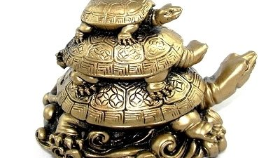 rùa phong thủy